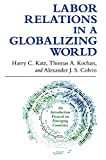 img - for Labor Relations in a Globalizing World book / textbook / text book