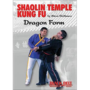 Shaolin Temple Kung Fu: Dragon Form movie