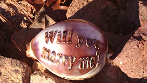 Personalize by adding a name Custom Hand Made All Natural Will you marry me? Engraved On A Tiger Cowrie Seashell Say It On A Shell