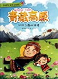 Qinghai-Tibet Plateau- Prayer at the Mountain Peak of the Earth (Chinese Edition)