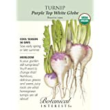 Turnip Purple Top White Globe Organic Seed