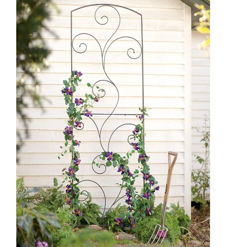 Bentley Garden Wrought Iron Set Of 2 Metal Obelisks: Garden Flourish Wrought Iron Trellis