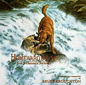 Homeward Bound: The Incredible Journey (1993 Film)