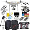 DJI Phantom 3 Professional Quadcopter Drone Kit (24-Items)