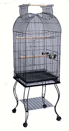 Bird Parrot Cage Cockatiel Amazon African Grey Caique Conure, 20 X 20 X 65