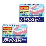 デントパワー 入れ歯洗浄剤 5ヵ月用x2個セット