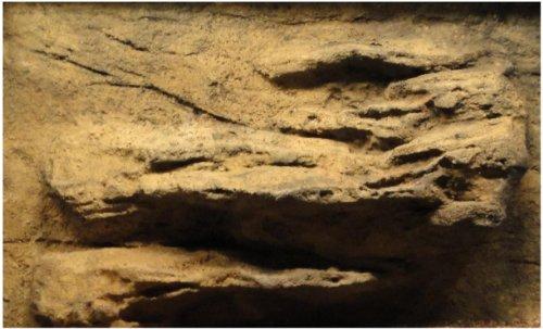 Imagen de Rocas universal 36 pulgadas por 16 pulgadas cornisa acuario/reptil fondo rígido de la espuma