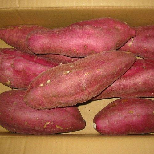 徳島県産さつまいも 新物 鳴門金時芋 3Lサイズ 5kg詰め