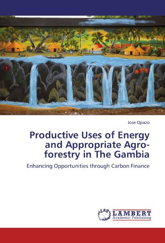Productive Uses of Energy and Appropriate Agro-forestry in The Gambia: Enhancing Opportunities through Carbon Finance