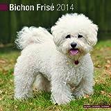 Avonside Publishing Bichon Frise 2014 (Calendar 2014)