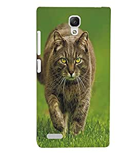 PRINTSWAG WILD CAT Designer Back Cover Case for XIAOMI REDMI NOTE PRIME