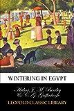 Wintering in Egypt