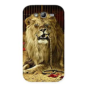 Impressive Dude Lion Multicolor Back Case Cover for Galaxy Grand Neo