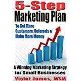 5 Step Marketing Plan: A Sales and Marketing Strategy for Small Business ~ Violet James