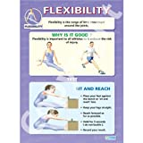 Human Flexibility PE Educational Wall ChartPoster in laminated paper A1 850mm x 594mm