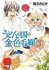 うどんの国の金色毛鞠 第3巻 2013年12月09日発売