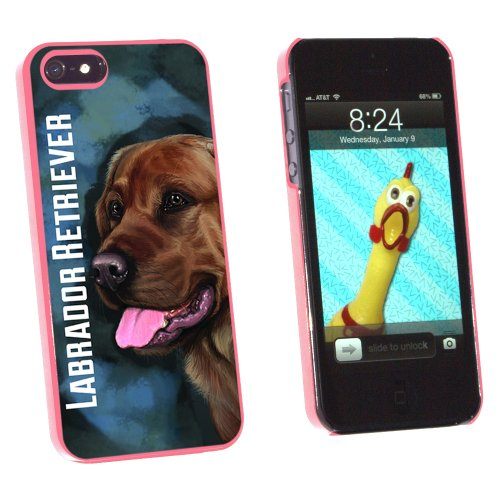 Chocolate Labrador Retriever Blue - Dog Pet - Snap On Hard Protective Case for Apple iPhone 5 5S - Pink