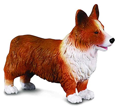 CollectA Welsh Corgi - 1