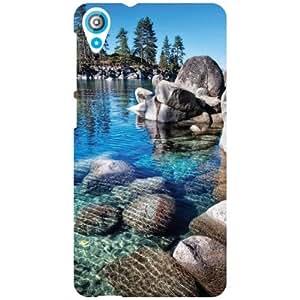 HTC Desire 820 Back Cover - Sea Love Designer Cases