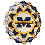 Iron Stop University of Michigan Wind Spinner