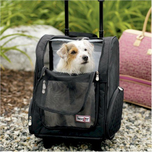 Snoozer Pet Dog Cat Puppy Car Suv Travel Carrier Backpack With Rolling Casters Mediumblack