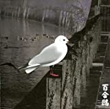 13 Japanese Birds 3