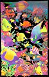Opticz Living Reef Blacklight Poster