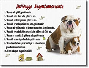 englische bulldogge eigentumsrechte witziges schild aus. Black Bedroom Furniture Sets. Home Design Ideas