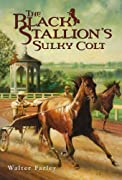 The Black Stallion's Sulky Colt by Walter Farley cover image