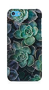 Amez designer printed 3d premium high quality back case cover for Apple iPhone 5C (flowers green)