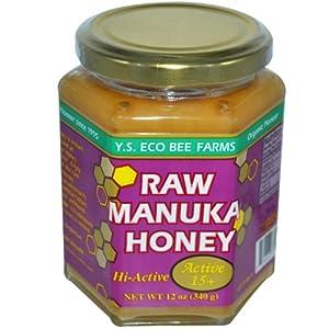 Raw Manuka Honey YS Eco Bee Farms 12 oz Paste