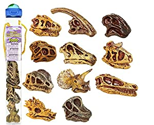 Safari Ltd Dinosaur Skulls TOOB