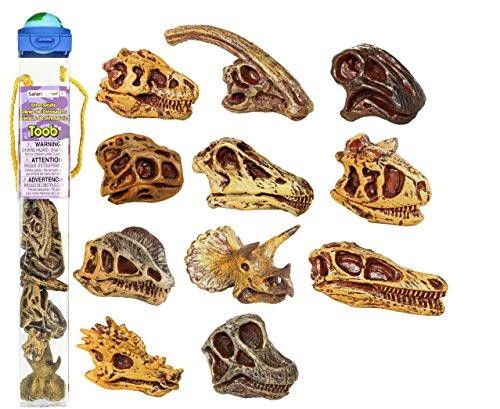 Safari 687404 - Tubo con miniature di scheletro di dinosauro