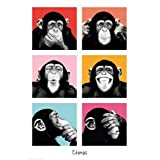 Empire 409256 The Chimp -