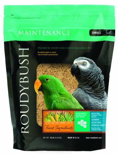 Roudybush Daily Maintenance Bird Food, Small, 10-Pound