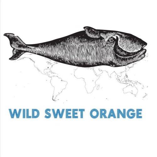 Amazon Com Im Coming Home Wild Sweet Orange