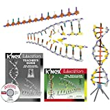 K'NEX Education - DNA, Replications and Transcription Set