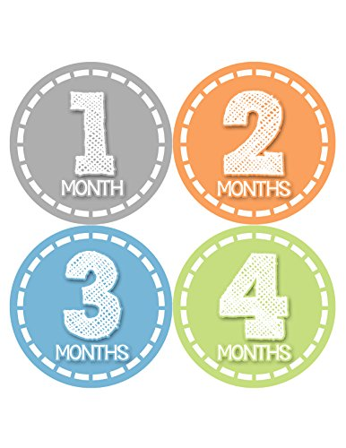 Months in Motion 368 Monthly Baby Stickers Baby Boy Months 1-12 Milestone Photo