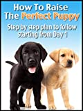 How To Raise The Perfect Puppy (Training Your Dog)