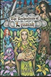 img - for The Enchantress of Lynniah (Volume 1) book / textbook / text book