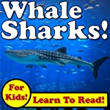 Whale Sharks! Learn About Whale Sharks While Learning To Read - Whale Shark Photos And Facts Make It Easy! (Over 45+ Photos of Whale Sharks)
