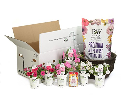 Proven Winners DIY Premium Hanging Basket Kit Above & Beyond Combination with 15 in. Container