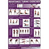 Resistance Tubing Poster - Lower Body