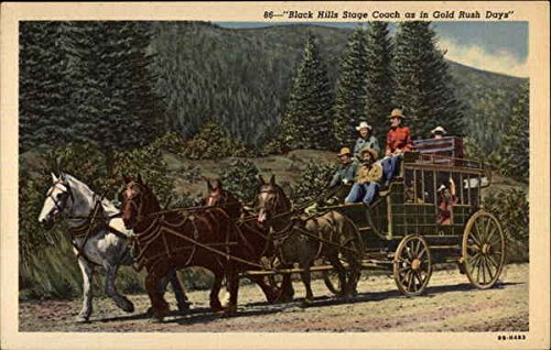 black-hills-stage-coach-as-in-gold-rush-dayss-cowboy-western-original-vintage-postcard