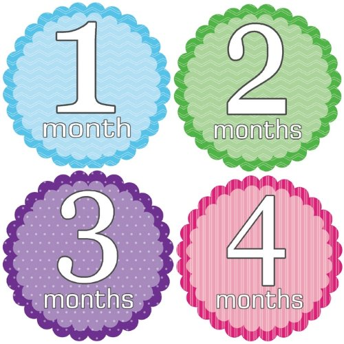 Sweet & Simple Monthly Baby Bodysuit Stickers - 1
