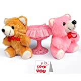 TIED RIBBONS Hug Day Special Soft Toys Teddy Lovers Kiss Hug Day Pink Red Best Gift For Her Wife Girl Friend Love...