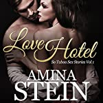 Love Hotel: So Taboo Sex Stories, Volume 1 | Amina Stein