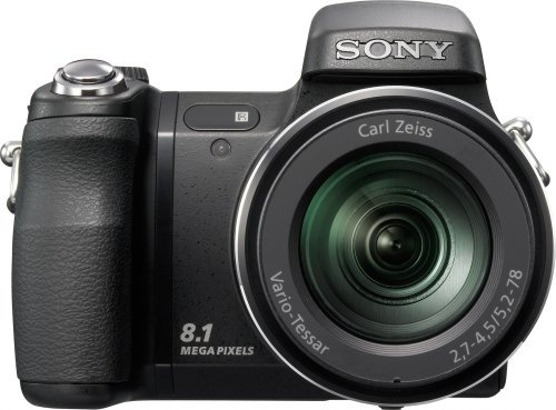 Sony Cybershot DSC-H9 is one of the Best Point and Shoot Digital Cameras for Action Photos Under $750