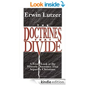 http://www.amazon.com/Doctrines-That-Divide-Historic-Christians-ebook/dp/B002AMVW7G/?tag=echristia-20#reader_0825431654