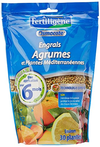 fertiligene-8964-engrais-osmocote-agrumes-et-plantes-mediterraneennes-750-g